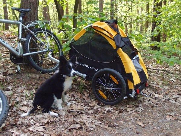 Przyczepka rowerowa dla psa marki Burley model Trail Wagon